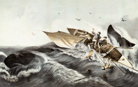 Sperm Whaling n2-The Conflict - Lithograph