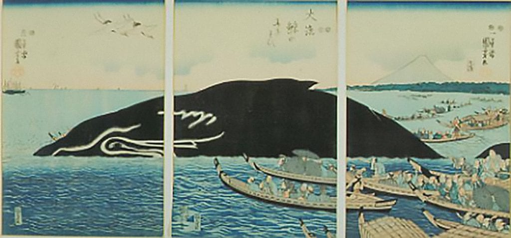 Format- Ukiyo-e triptych woodblock print on paper, triple oban. In the foreground are highly ornamented boats filled with people rowing out to view an enormous whale that is surfacing in a harbor. A pair of cranes fly overhead on the left. The locale, with Fujiyama visible in the background, is identified as Shinagawa Bay, near Edo (Tokyo). Painting is an allusion to the Shinagawa Whale of 1798